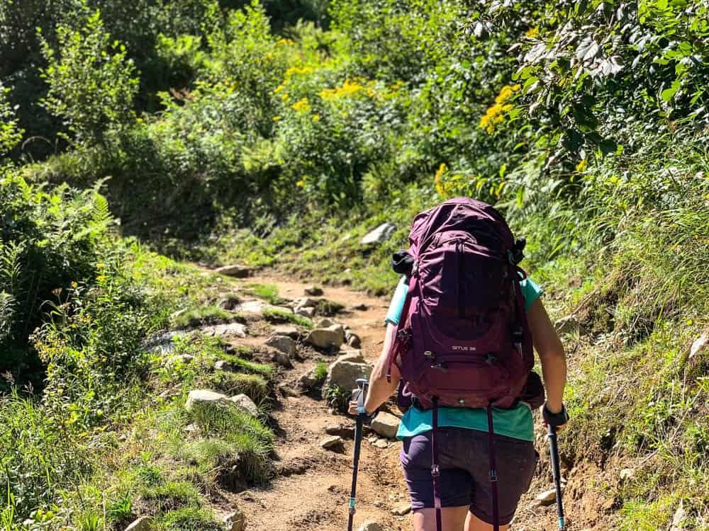 hiking back pack